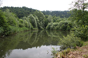 Draga valley ponds 2.jpg