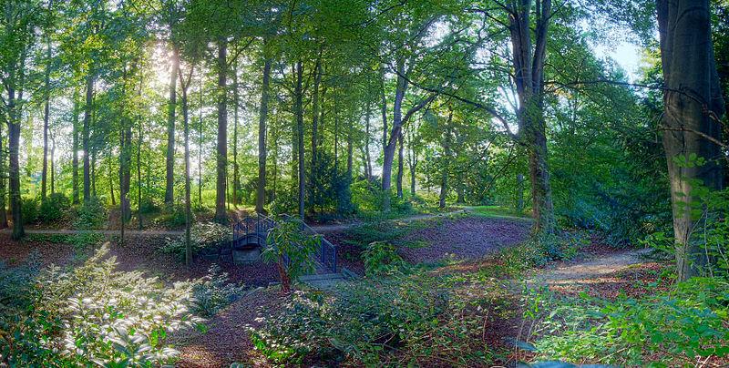 File:Dreslers Park Kreuztal (forest and bridge).JPG