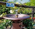 Drinking fountain Romania.jpg
