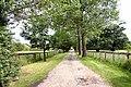 Driveway to Haygreen Farm - geograph.org.uk - 192598.jpg