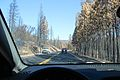 Driving through Rim Fire on Big Oak Flat Road - Flickr - daveynin.jpg