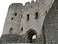 Dudley castle. - panoramio (3).jpg