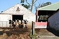 Dykeneuk Farm - geograph.org.uk - 335488.jpg