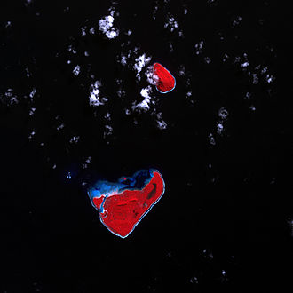 2009 Samoa earthquake and tsunami - Niuatoputapu before the tsunami. (Vegetation is red, bare ground is pale blue-grey, clouds and breaking waves are white or cyan.)