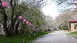 烏帽子山公園