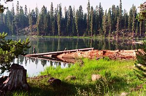 Lassen National Forest - Echo Lake in Lassen National Forest