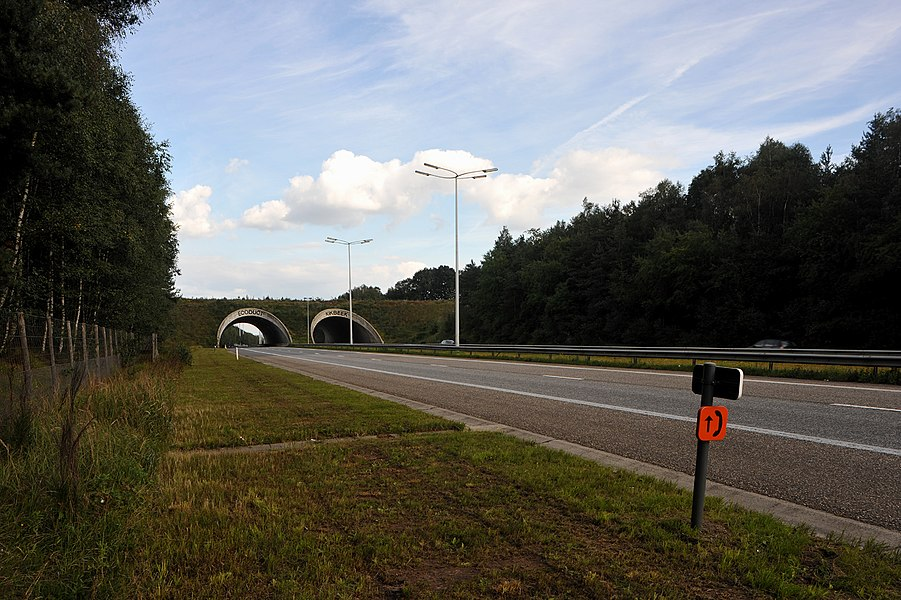 "Wildlife overpass ""Ecoduct Kikbeek"" over the E314 west of Maasmechelen; Limburg, Belgium."