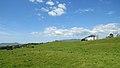 Eightercua Stone Alignment, Ring of Kerry (506548) (27756312470).jpg