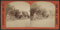 Eighth Avenue entrance, Central Park, N.Y, from Robert N. Dennis collection of stereoscopic views.png