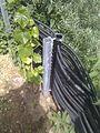 Energiezaun mit Bepflanzung.jpg