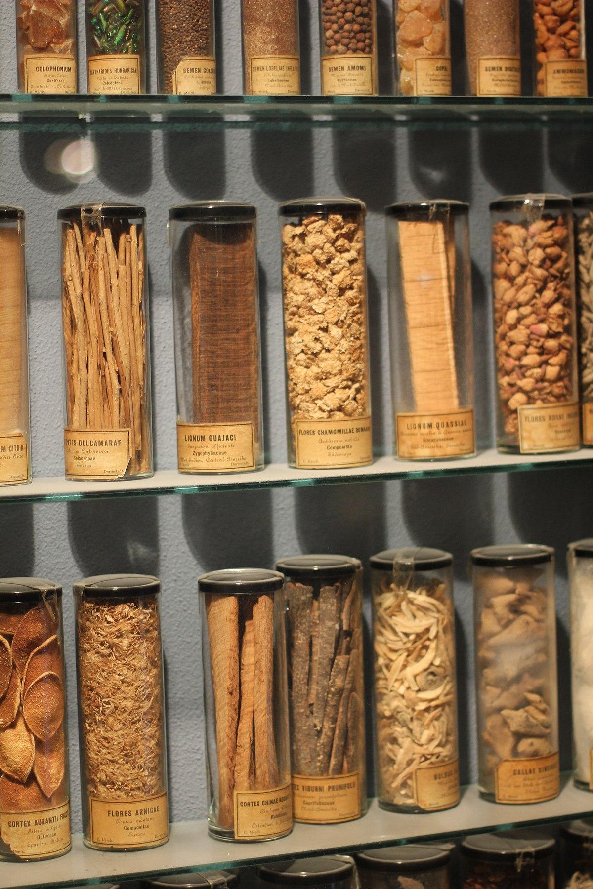 Herbal Medicine Wikipedia