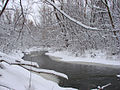 Etobicoke Creek after a snow fall.jpg