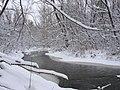 Etobicoke Creek after a snow fall.jpg