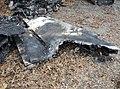 Execuflight Flight 1526 wreckage 2.jpg