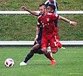 FC Liefering versus FC Bayern München UDreiundzwanzig 07.jpg