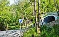 Fahrradstraße im Naturpark Rothaargebirge - panoramio (1).jpg