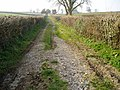 Farm track from Tatworth - geograph.org.uk - 1315824.jpg