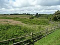 Farmland, Caldey Island (Ynys Bŷr) - geograph.org.uk - 958195.jpg
