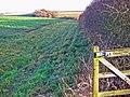 Farmland at SE962375 View North - geograph.org.uk - 97916.jpg