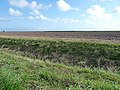 Farmland near Wainfleet (1) - geograph.org.uk - 1532275.jpg