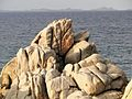 Felsküste Sardinien3.jpg