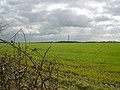 Field and pylon - geograph.org.uk - 375470.jpg