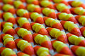 Field of candy corn (2995944456).jpg