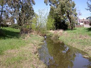 Rohnert Park, California - Five Creek