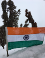 Flag Hoisted on the way to Tungnath.png