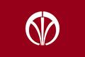 Flag of Iizuka, Fukuoka.png