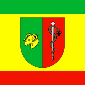 Yevpatoria Municipality - Image: Flag of Yevpatoriya