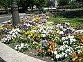 Flower bed, Kossuth Square, 2009 BudapestDSCN3492.jpg