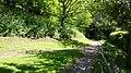 Footpath - geograph.org.uk - 429827.jpg
