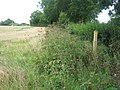 Footpath junction near Tuesnoad Farm - geograph.org.uk - 1427917.jpg
