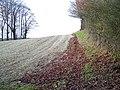 Footpath near Membury - geograph.org.uk - 1650293.jpg