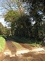 Footpath through Dudwick Estate - geograph.org.uk - 741478.jpg