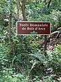 Forêt domaniale de Bois-d'Arcy 9.jpg