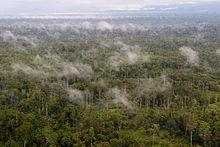 Western New Guinea - Wikipedia