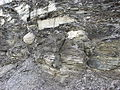 Fractured concretion in Rhinestreet Shale Member.jpg