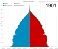 France Animated Population Pyramid.png