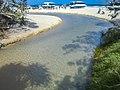 Frazer Island (23461173243).jpg