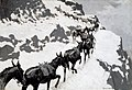 Frederic Remington - The Mule Pack - 43.56 - Museum of Fine Arts.jpg
