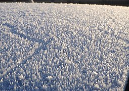 Frost on car roof, Newton Abbot - geograph.org.uk - 1029644.jpg