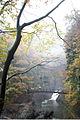 Fukuroda fall (6367535685).jpg