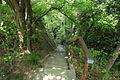 Futamurayama Walking Trail3, Toyoake 2012.JPG