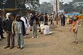 Gangasagar Fair Transit Camp - Kolkata 2013-01-12 2770.JPG