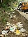 Garbage along road Tourism ATR P1180860.jpg