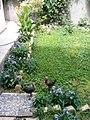 Gardens in Baghdad 63.jpg