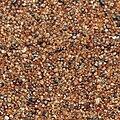 Garnet sand SS.jpg
