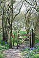 Gate on footpath along Duncliffe Hill - geograph.org.uk - 410873.jpg